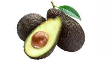 avocado bewaren in de vriezer