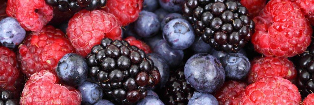 micronutrienten vitaminen mineralen enzymen spoorelementen uit fruit en bessen juvo met organische vitaminen